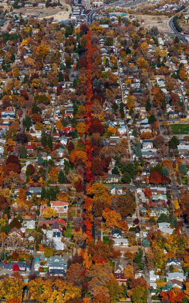 Aerial Photography-Harrison Blvd. Boise, Idaho in Fall Colors.