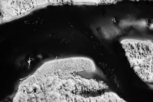 Near Infrared Vertical Aerial Photography, Boise River in East Boise, Idaho.